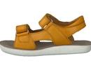 Shoo Pom  yellow